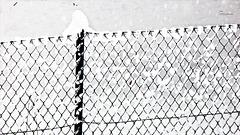 Snow-fence (PiP)