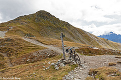 Mountainbike trifft Wegweiser - Mountain bike meets signpost