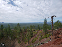 View from Lava Butte Cone at Newberry National Volcanic Monument (+10 insets!)