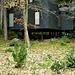 Une petite maison dans la forêt