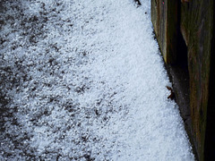 Hail and snow today :-(