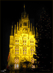 Town Hall from Gouda some days before Christmas...
