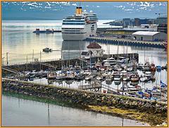 Tromsø : il porto nel fiordo - (797)