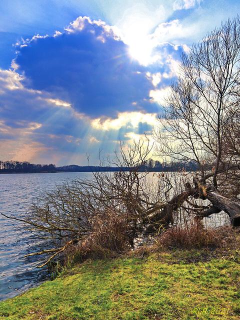 Gegenlicht am Ostorfer See