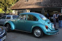 Schöner alter Käfer