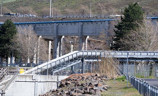 John Day dam (#0351)