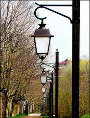 """Moncalieri : Un viale nel parco con tutti i lampioni in fila - SPC 5/ 2019 """"effetto domino"""" v.1"""