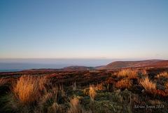 Moorland Sundown