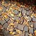 Disegno di sampietrini e foglie