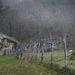 Serra da Estrela, HFF L1006464