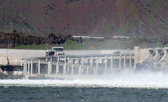 John Day dam fish ladder (#0350)