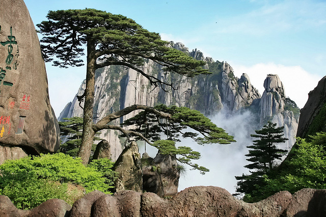 Hungshan Celestial Capital Peak and Welcoming Pine 1500 Years Old
