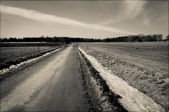 last snow in the fields