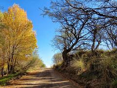 E Yucca Farm Road