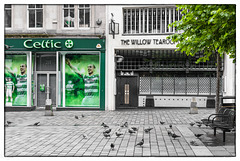Celtic versus Mackintosh