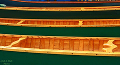 Handcrafted Canoes (1)