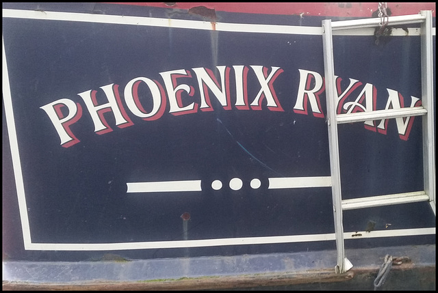 Phoenix Ryan