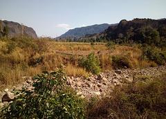 La campagne (Laos)