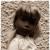 Sasha Dolls - Trendon & Gotz