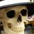 The Skull Bloke