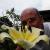 Kiwi Plantman49