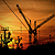 Cranescapes: Construction cranes, mobile cranes, container cranes, ...
