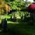 Churchyards/Graveyards