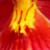 PINK - ORANGE - RED