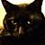 JE Piper & Raven Cat