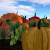 Second Life - Seasons - Autumn