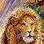King Lion !!!...
