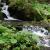Bäche und Flüsschen / Creeks and brooks