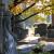 Begraafplaatsen   -cemetry's